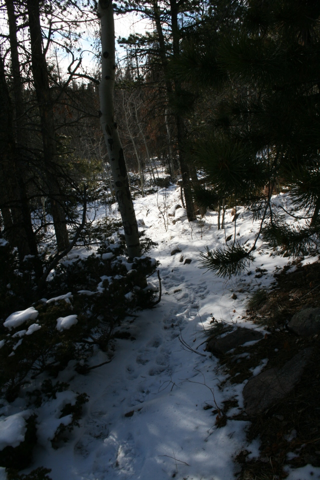 The trail up to the climbing area