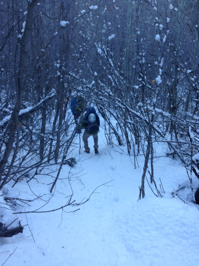 Matt on the trail in American Fork Canyon