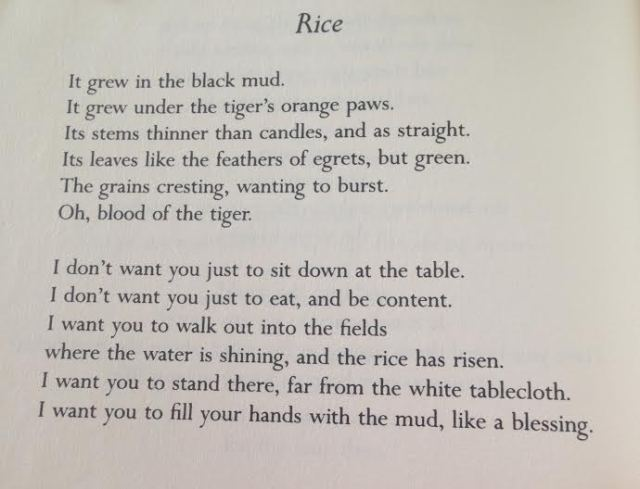 MaryOliver_Rice